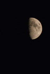 July Half Moon