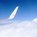 Small photo of Cruising Altitude