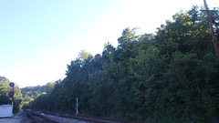 No trains coming
