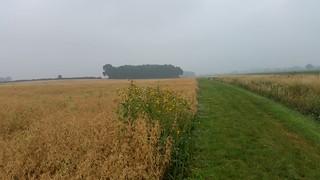 2. Oxfordshire Way near Foscot