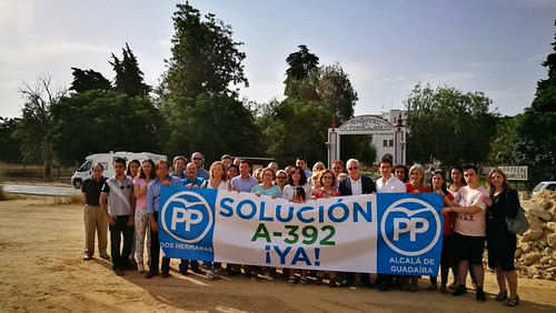 El PP pide que se complete el desdoble de la A-392