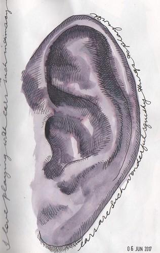 20170606 - ears