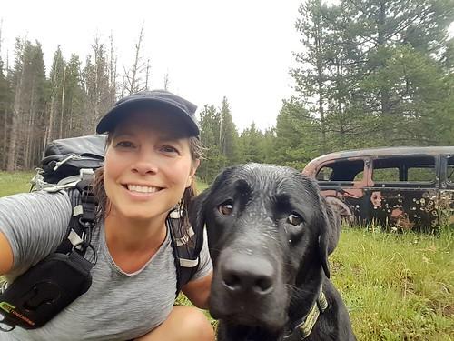 dailydogchallenge ddc dunkel hiking labrador outoftheordinary