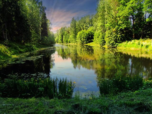 озеро в лесу, Canon POWERSHOT SX520 HS