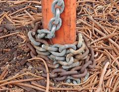 Chains and Pine Needles