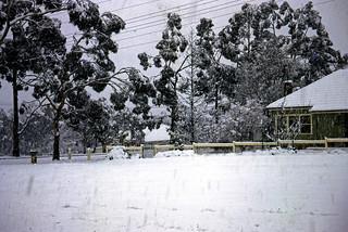 Snowy Mt Victoria