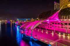 Tampa Florida 2017-45.jpg