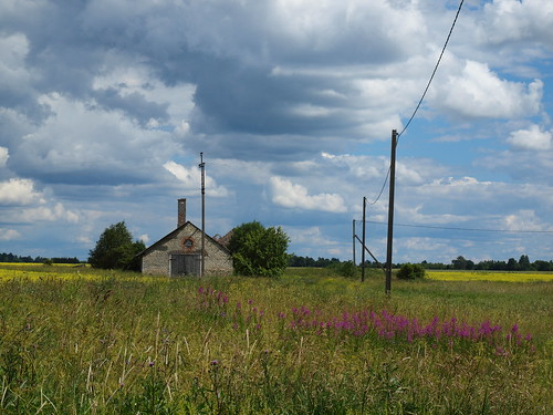 estonia summer landscape barn viisu field
