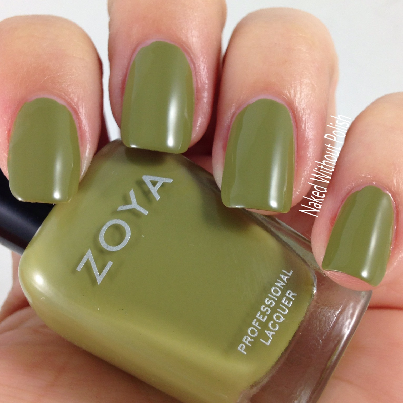 Zoya-Arbor-4