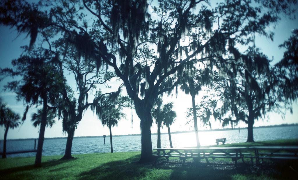 Safety Harbor Map Pinellas County Florida Mapcarta
