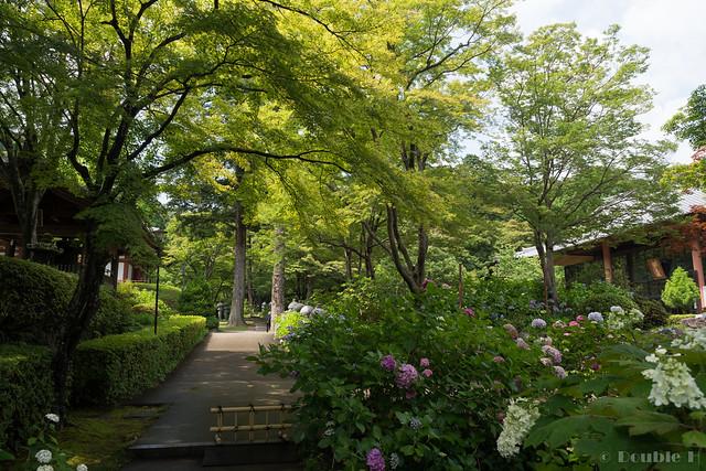 Kyuanji temple 2017.6 (6)