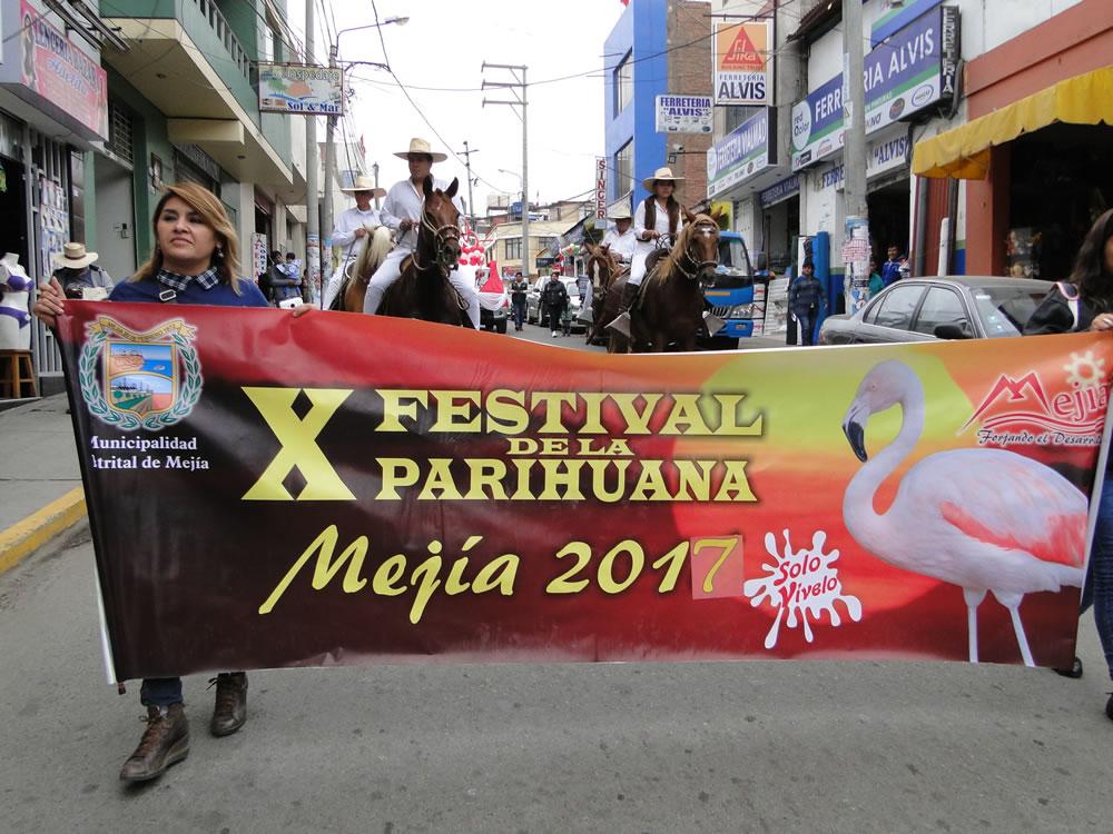 Pasacalle Mejia 2017