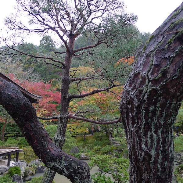 190-Kyoto