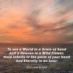 To see a World in a Grain of Sand And a Heaven in a Wild Flower, Hold Infinity in the palm of your hand And Eternity in an hour. — William Blake #williamblake #blake #poetry #poem #eternity #infinity #poetrycommunity