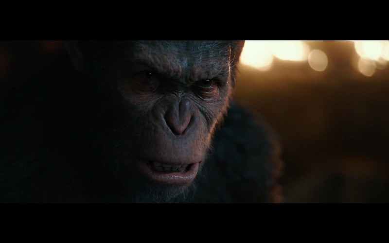 War of The Planet Apes