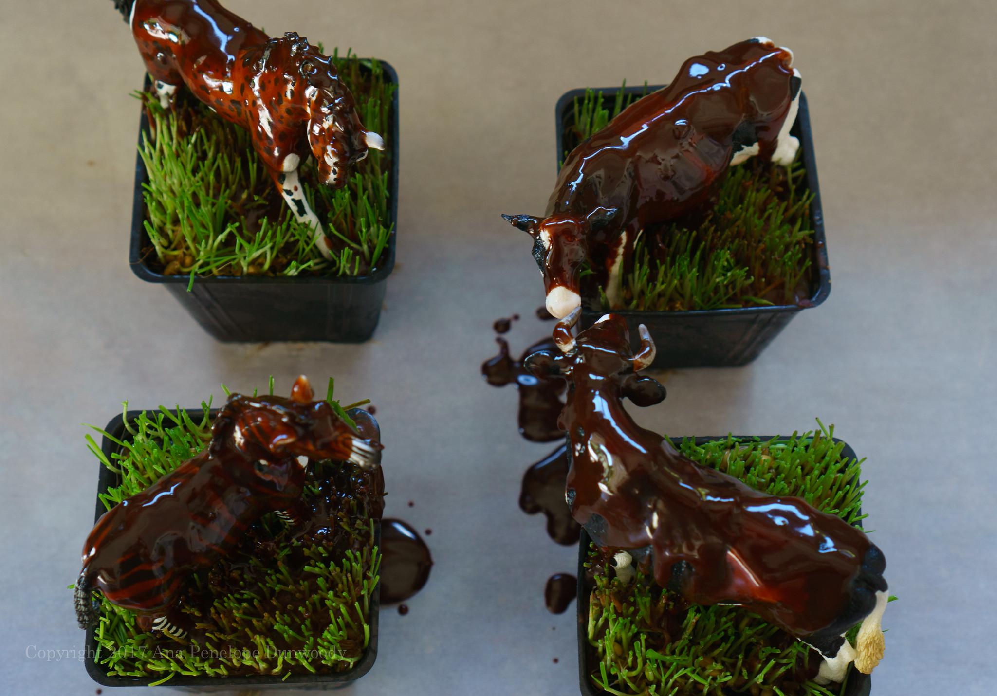 Glaçage Au Chocolat (Chocolate-butter Icing)