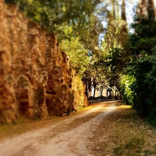 Scorci di parco. Roma, via Lombardia