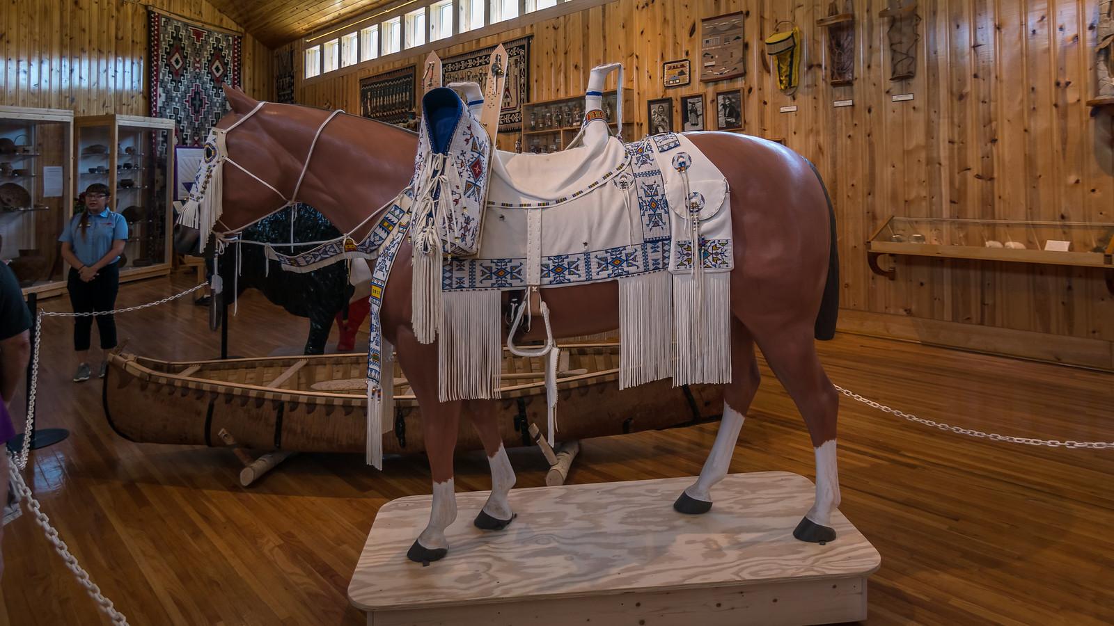 Crazy Horse - Montana - [USA]