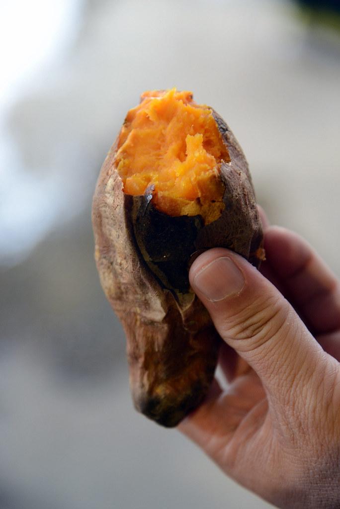 金門蚵殼墩