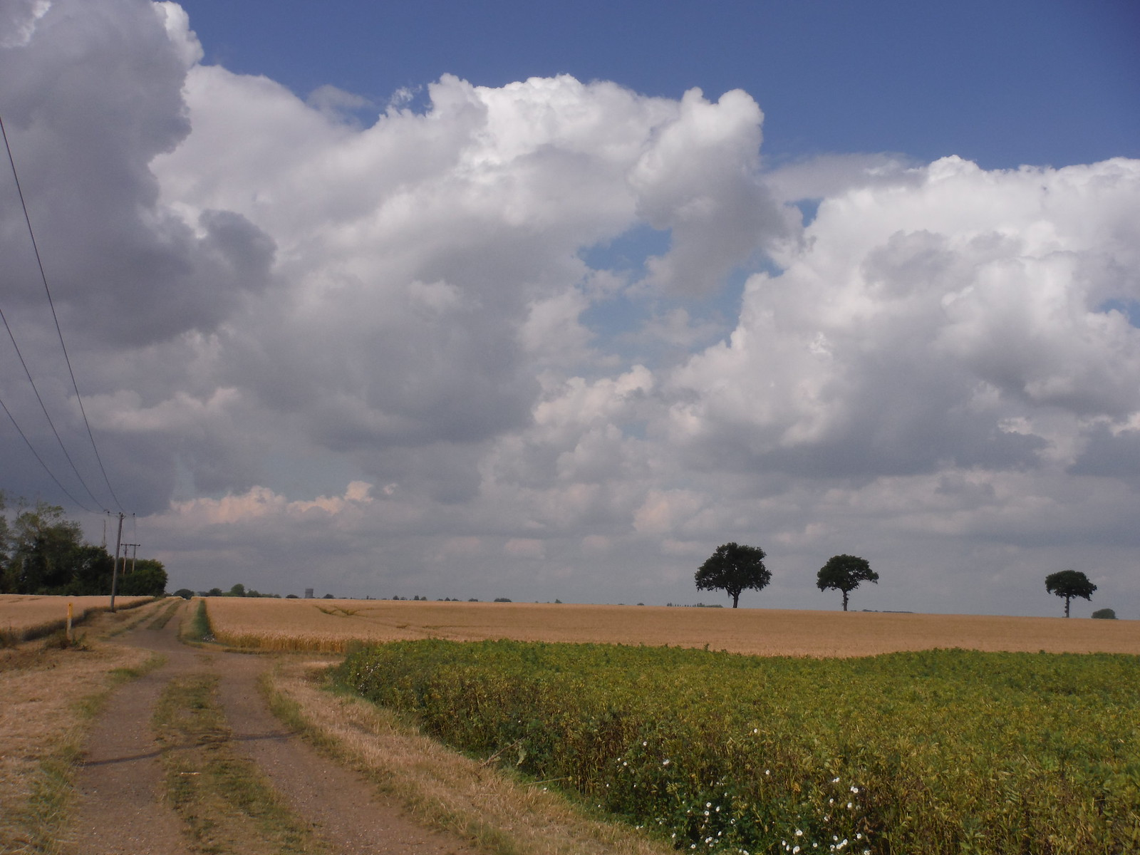 Big Skies and Long Views in Hertfordshire SWC Walk 233 - Arlesey to Letchworth Garden City