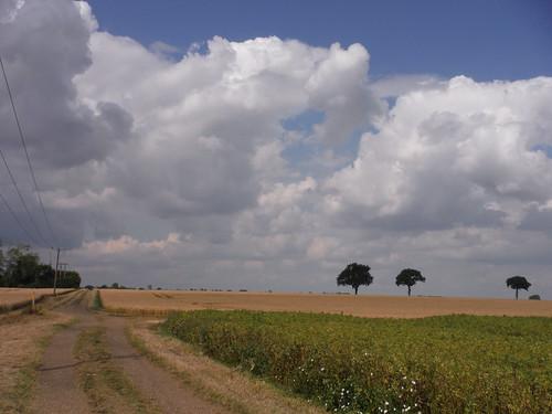 Big Skies and Long Views in Hertfordshire