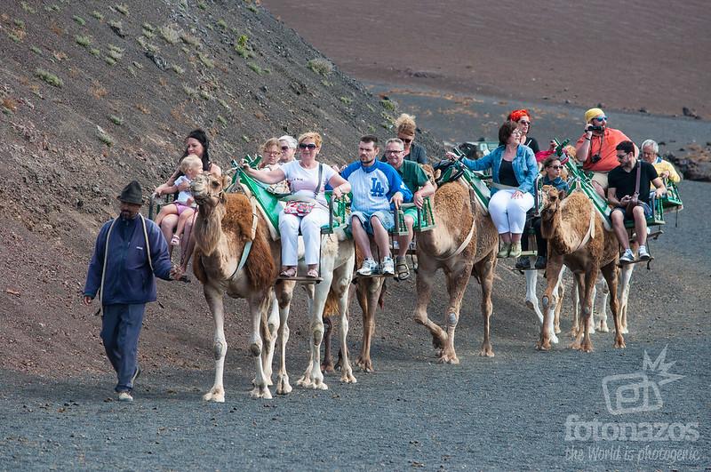 Echadero de Camellos
