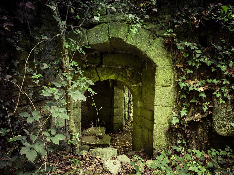 Urbex -Chateau de Rustephan  35933080440_bb7a0912c9_c