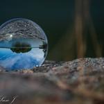 kulan - av Pics by Susie J