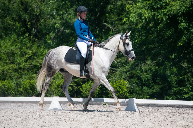20170709 Grif Dressage Tests-18