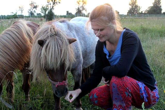 Ponies kroelen!