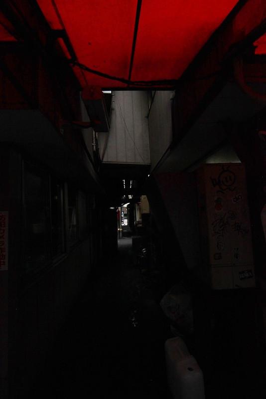 IMG_3503C