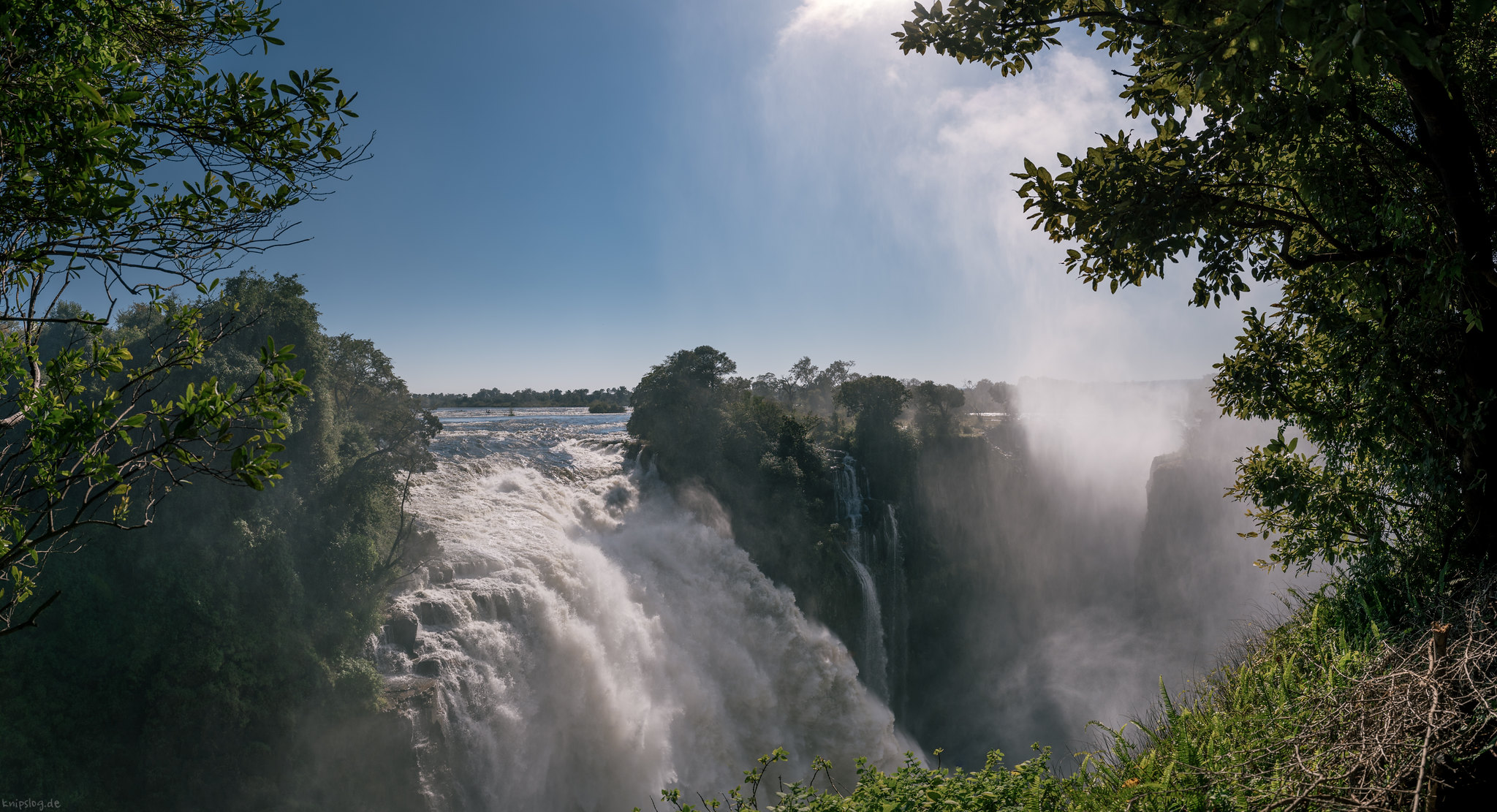 Victoria falls rainforest reserve