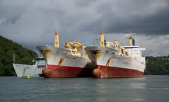 Falmouth Shipping