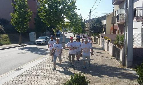 Caminhada em Fânzeres - Programa Freguesias em Movimento
