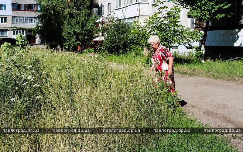 бурьян-2
