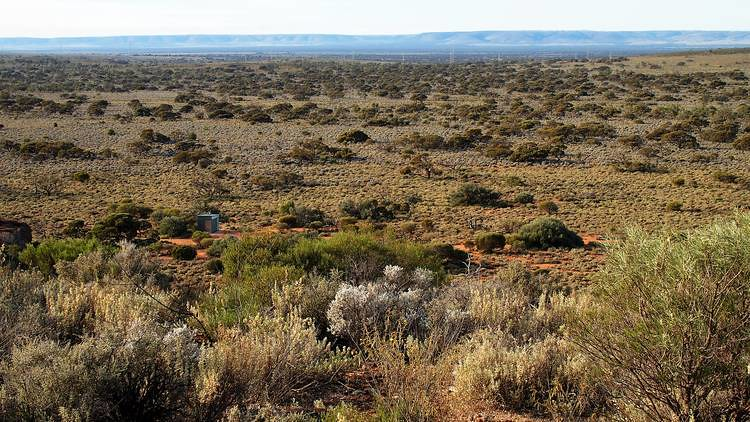 Loo from Wild Dog Hill, Whyalla Conservation Park, South Australia