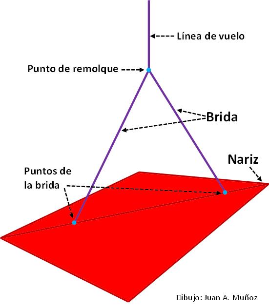 La cometa cuelga en ángulo. La nariz está más alta que la cola (20 ° a 30 °) (Dibujo: Juan A. Muñoz)