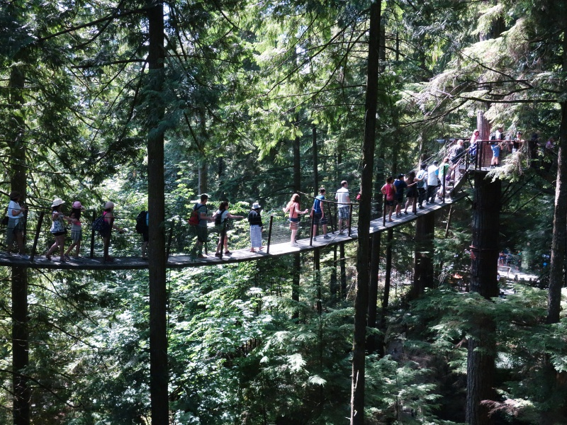 Capilano Suspension Bridge Treetops