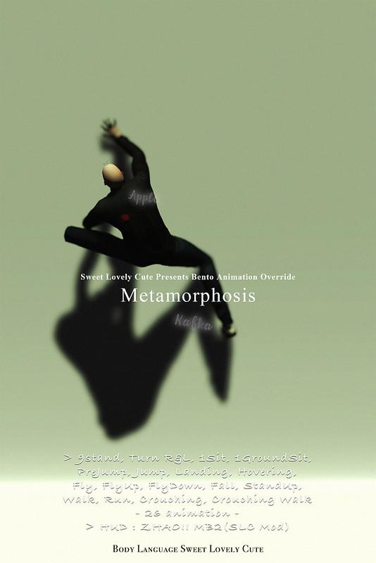 Bento AO Metamorphosis @ KAGAMI
