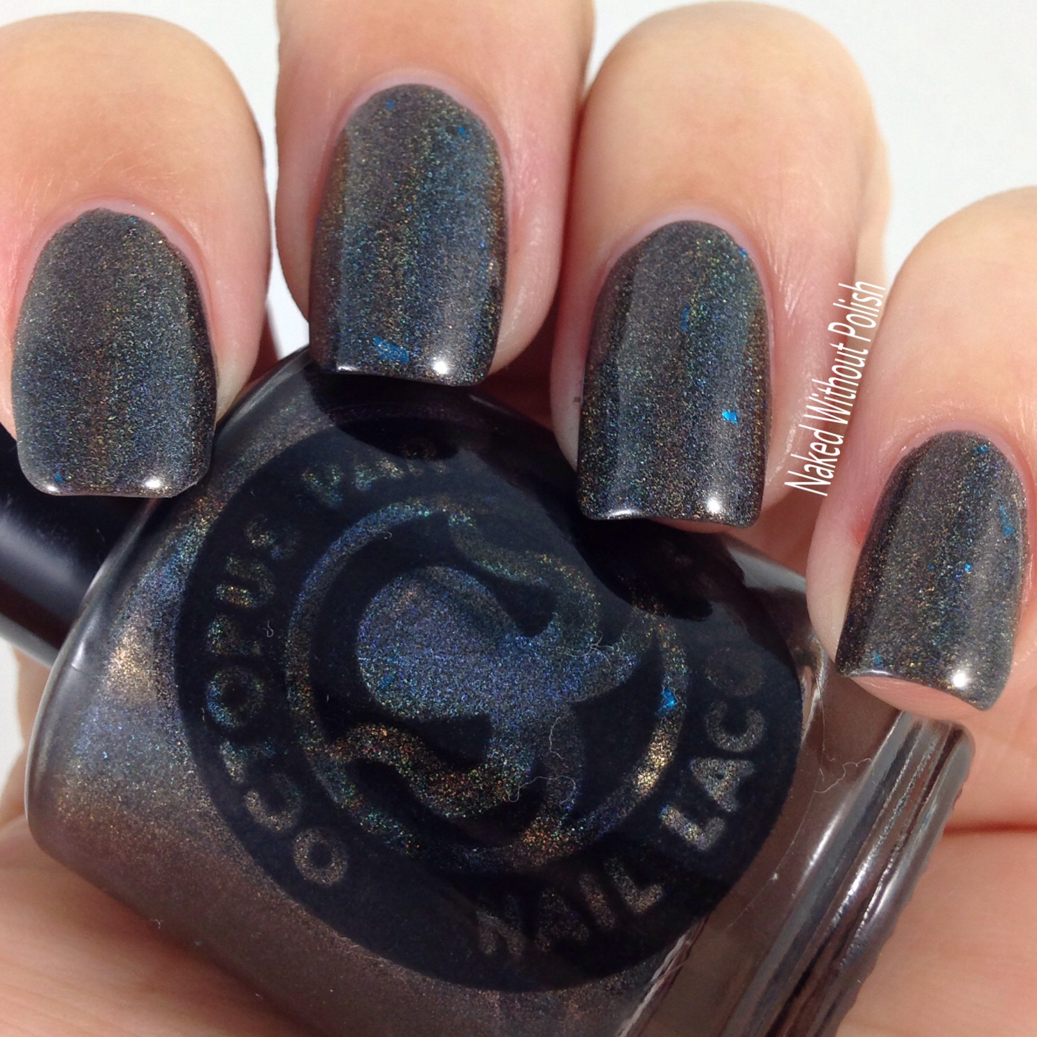 Octopus-Party-Nail-Lacquer-Logan-6