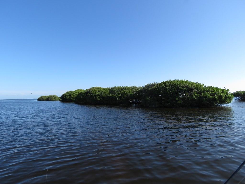 Bear Key Florida Around Guides