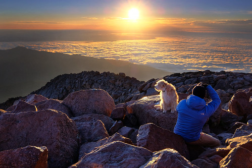 fuji fujifilm velvia landscape leefilters sunrise pikespeak colorado coloradosprings coloradolandscape dogs