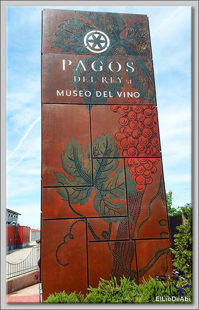 Museo del Vino Pagos del Rey y visita a Toro (2)
