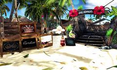 The Aloha Fair Sneak A peak