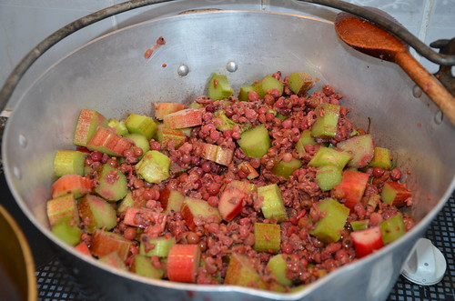 redcurrant and rhubarb jam July 17 (2)