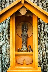 A DI DA PHAT QUAN THE AM BO TAT DAI THE CHI BO TAT GUANYIN KWANYIN BUDDHA 9667