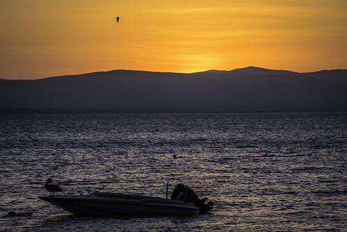 paracas pacific perú peru océanopacífico ocean pacificocean sunset sun sea sky atardecer sol mar bay bahía