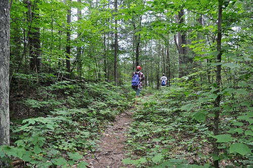 "Along the ""Shield"" trail at Bon Echo Provincial Park"
