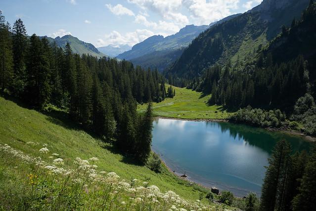 Alpler See . Riemenstaldner Tal (Uri)
