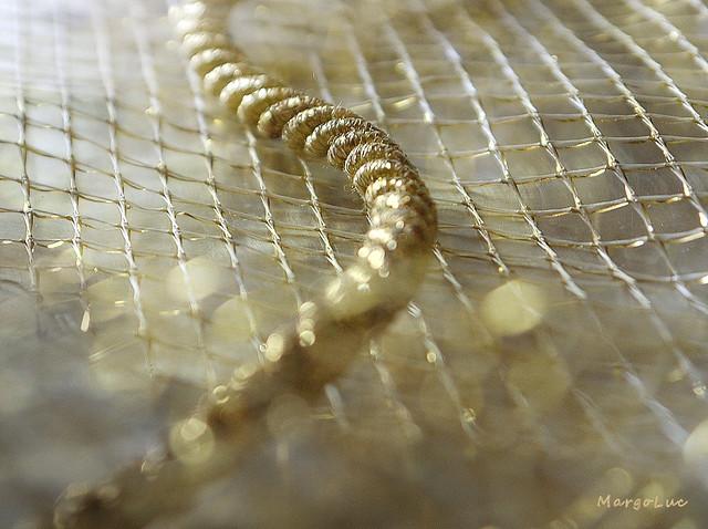 Golden Textures ...